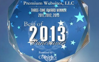 Best Website Designer 2013