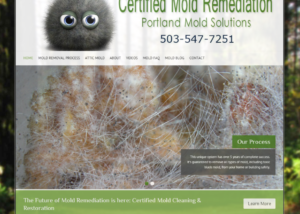Portland Mold Solutions