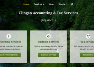 Dee Clingan CPA Website